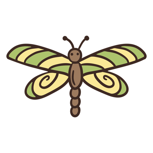 Cute dragon fly insect