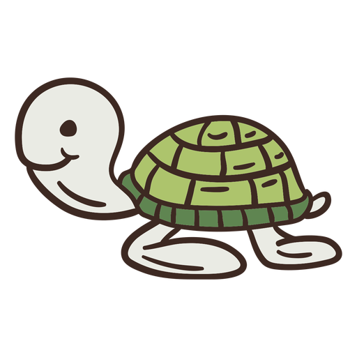 Cute turtle animal Transparent PNG