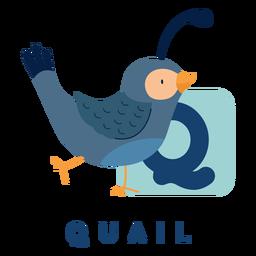 Alfabeto de codorna letra q