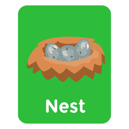Tarjeta de vocabulario de nido