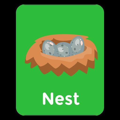 Nest vocabulary flashcard