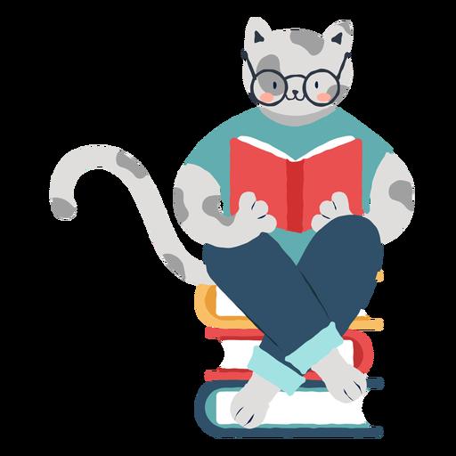Katzencharakter studieren
