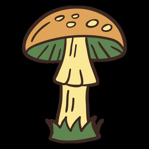 Tall mushroom illustration