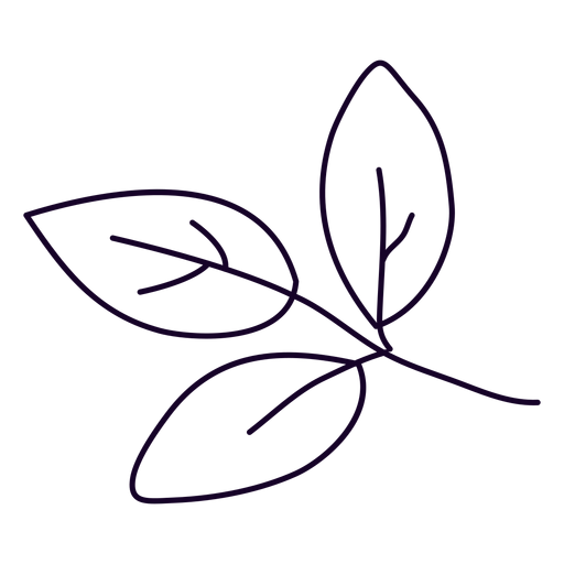 Three leaves doodle Transparent PNG