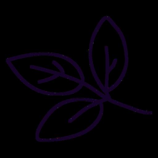 Three leaves doodle
