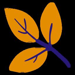 Três folhas planas