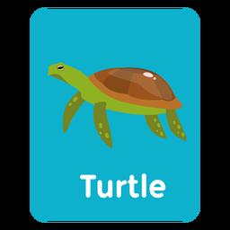 Tarjeta de vocabulario de tortugas