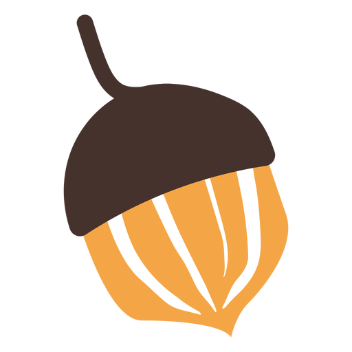 Autumn acorn cartoon Transparent PNG