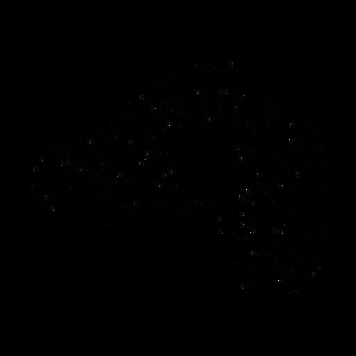 Camaleón elegante negro