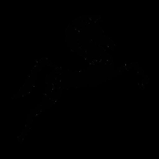 Caballo saltando elegante negro