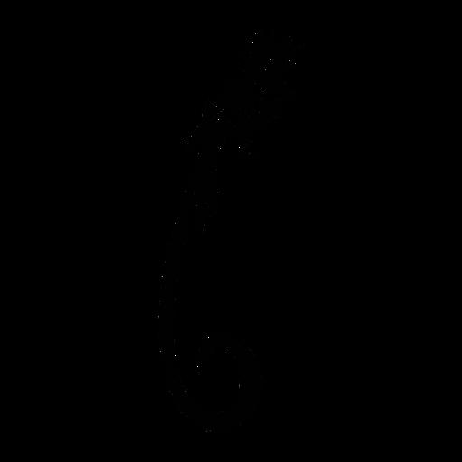 Paradise flycatcher stylish black