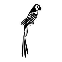Papagei steht still stilvoll schwarz