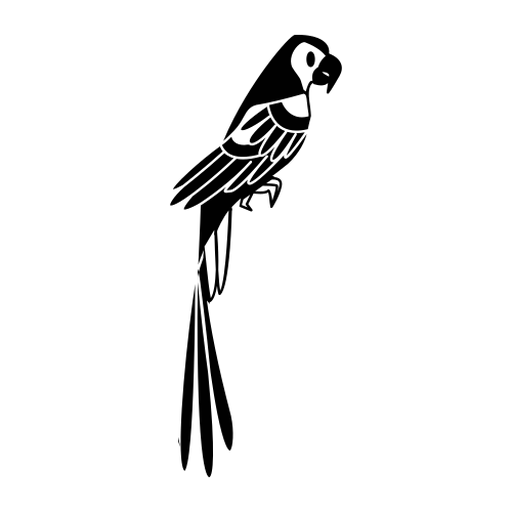 Papagaio parado ainda elegante preto