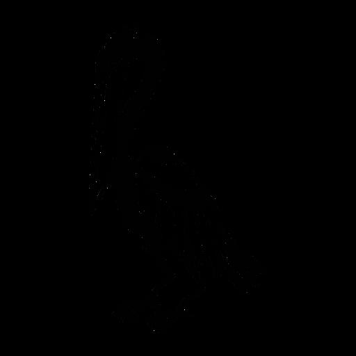 Pelikan der stilvolles Schwarz nach unten schaut