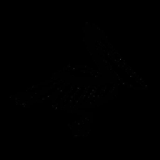 Pelícano nadando elegante negro