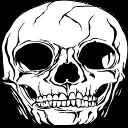 Gráfico realista del cráneo humano