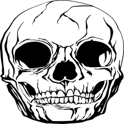 Realistic human skull graphic