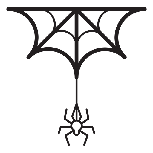 Spider and web line icon