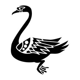 Cisne nadando elegante negro