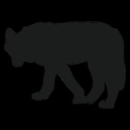 Silhueta circulando lobo