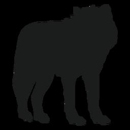 Lobo em pé silhueta de lobo