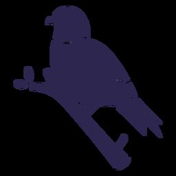 Bluebird Vogel schwarz