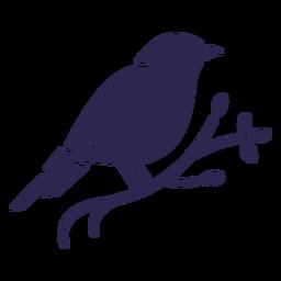 Canario negro