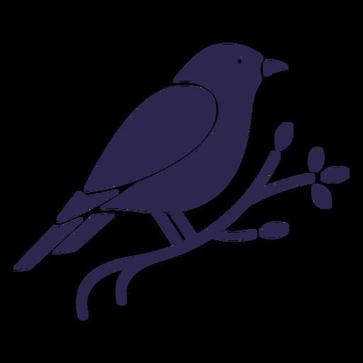 Pássaro canário preto