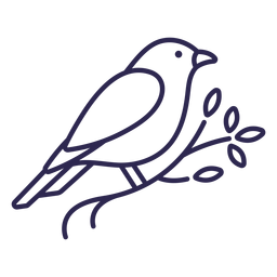 Golpe de pájaro canario