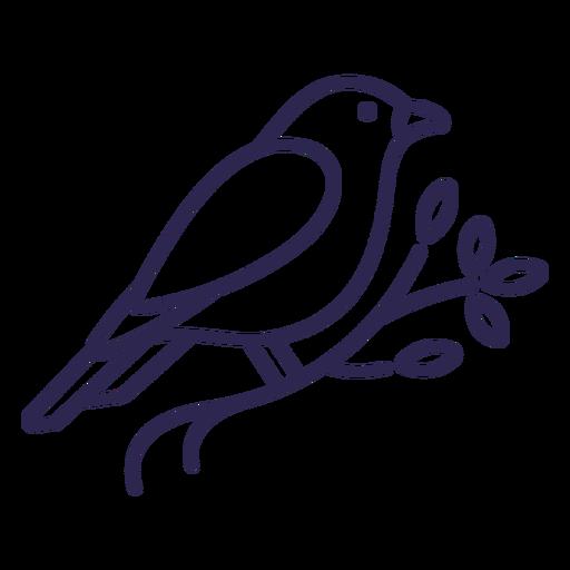 Canary bird stroke Transparent PNG
