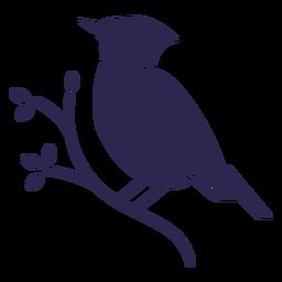 Cardenal pájaro negro