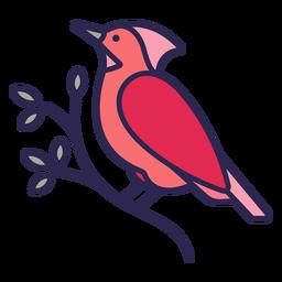 Pájaro cardenal plano