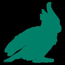 Kakadu Vogel Silhouette