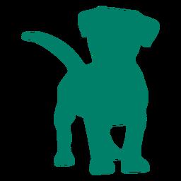 Silueta curiosa cachorro