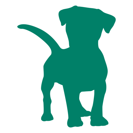 Curious puppy silhouette