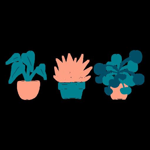 Lindas plantas de interior planas Transparent PNG