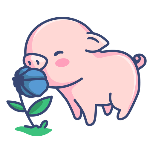 Cute pig with flower illustration Transparent PNG