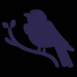 Indigo Ammer Vogel schwarz