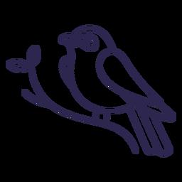 Indigo bunting bird stroke