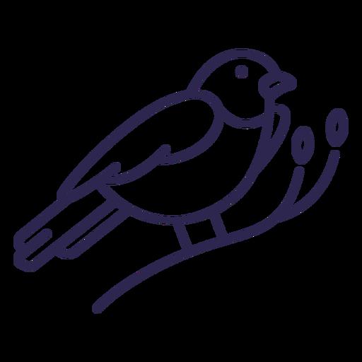 Trazo de pájaro azul de montaña