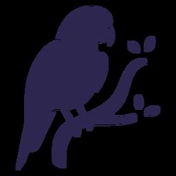 Pájaro loro negro