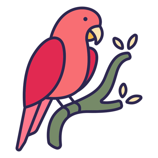 Parrot bird flat Transparent PNG
