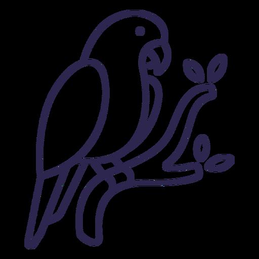 Curso de pássaro papagaio Transparent PNG