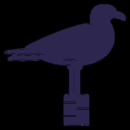 Pássaro gaivota preto