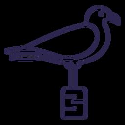 Pancada de gaivota