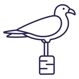 Seagull bird stroke