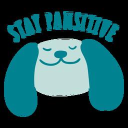 Fique distintivo pawsitive
