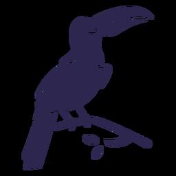 Tucán pájaro negro