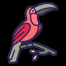 Toucan bird flat