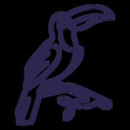 Toucan bird stroke